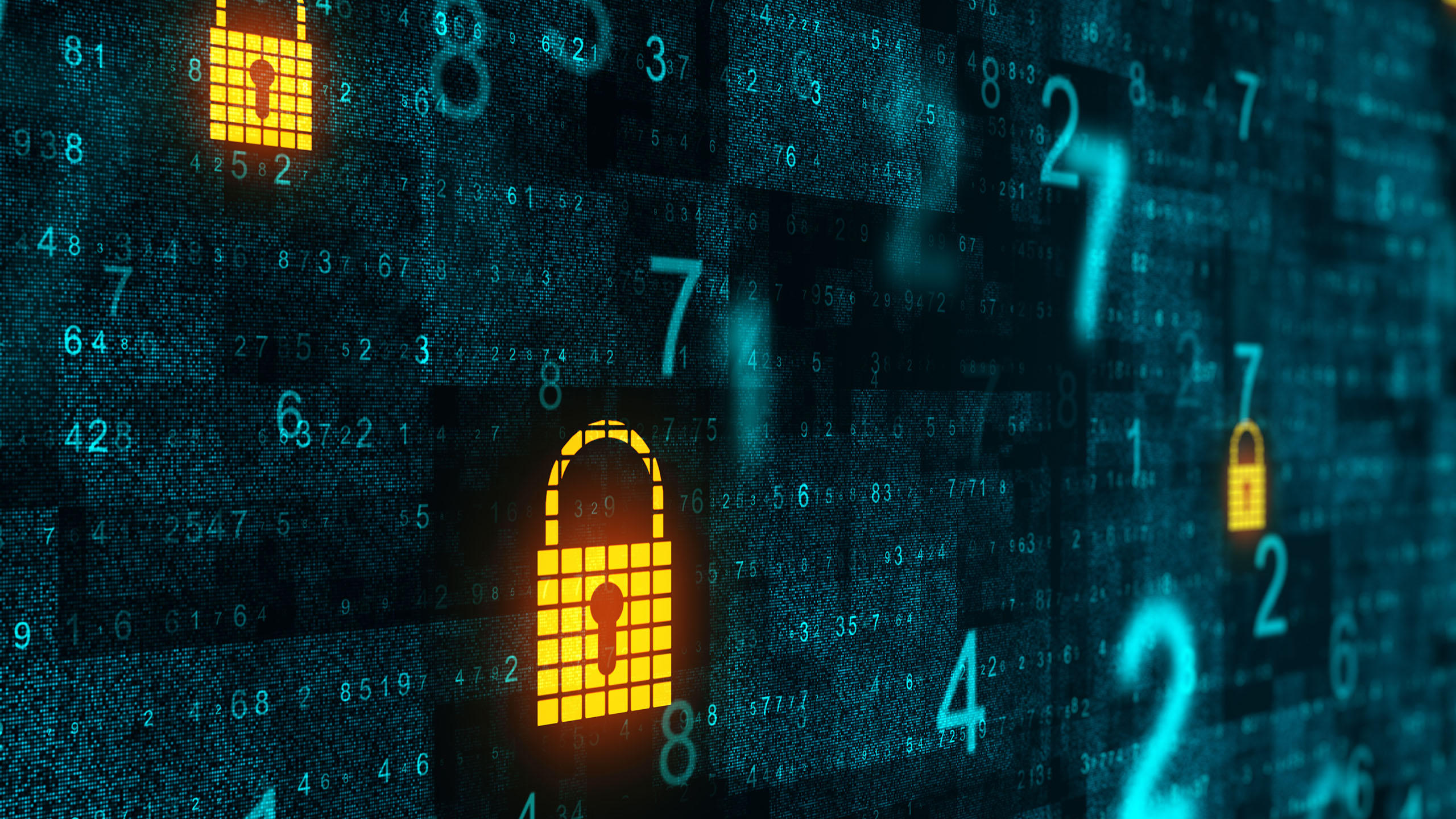 The importance of data privacy in the aviation industry
